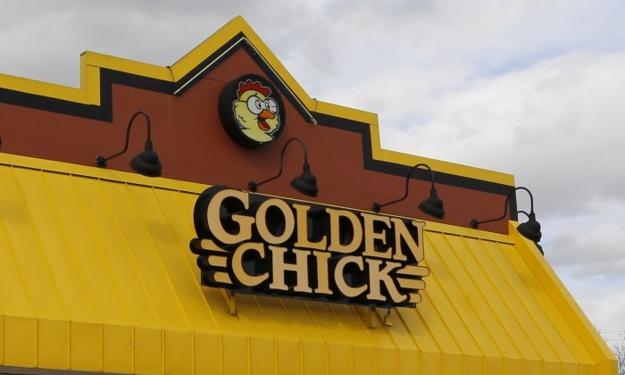 700X420 Golden Chick Gid