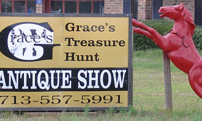 Show Graces Treasure Hunt