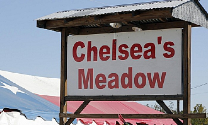 Shows Chelseas Meadow